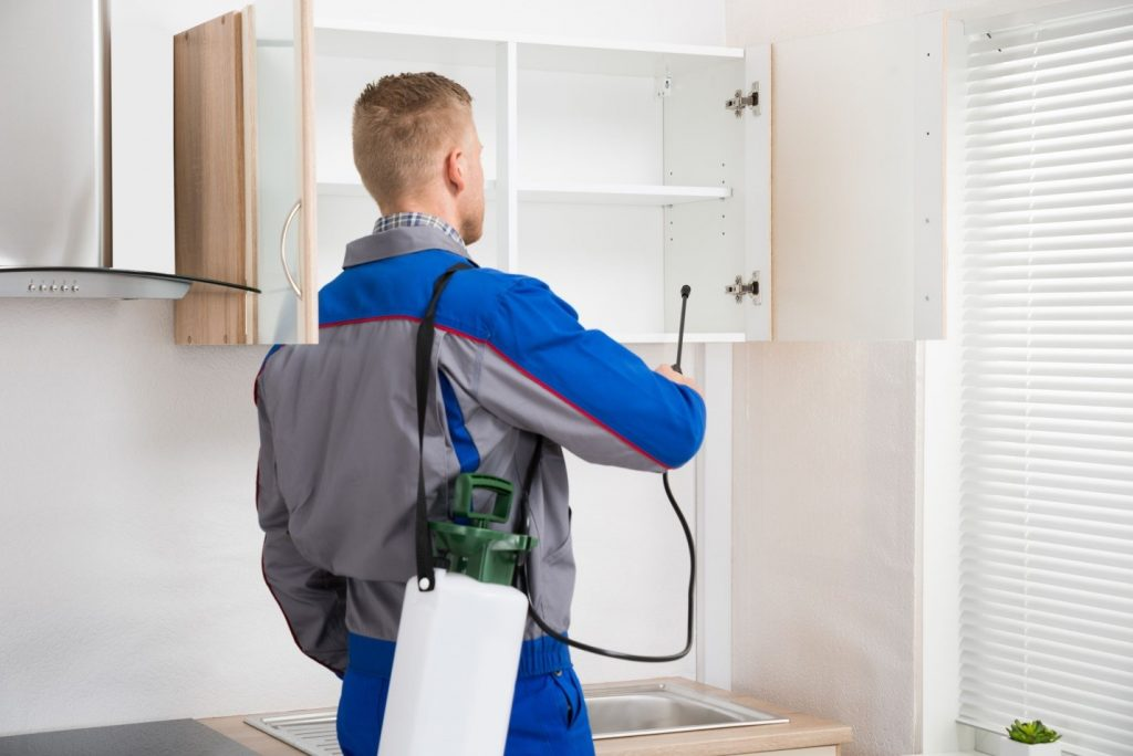 Pesticides for residential apartments