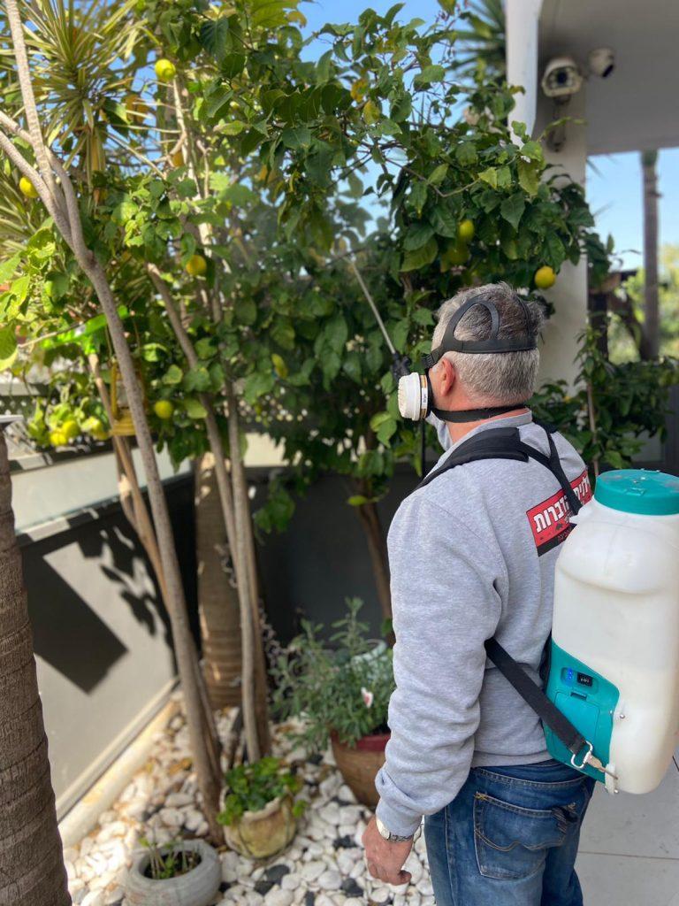 Pesticide before event